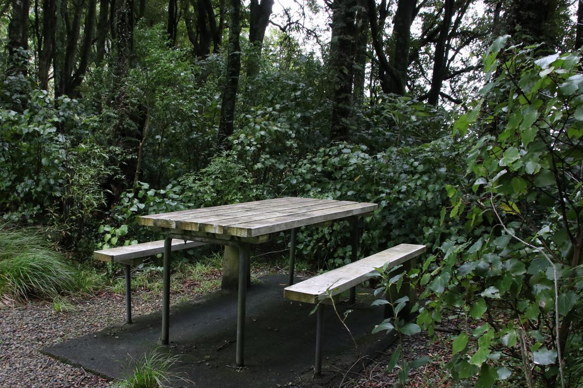 Picnic Tables at Ballance Domain, 2019