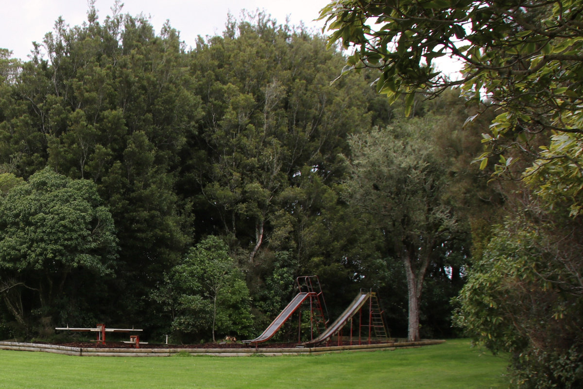 Ballance Domain playground, 2019