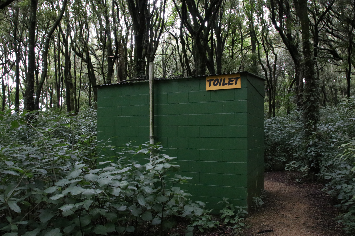 Toilet facilities at Ballance Domain, 2019